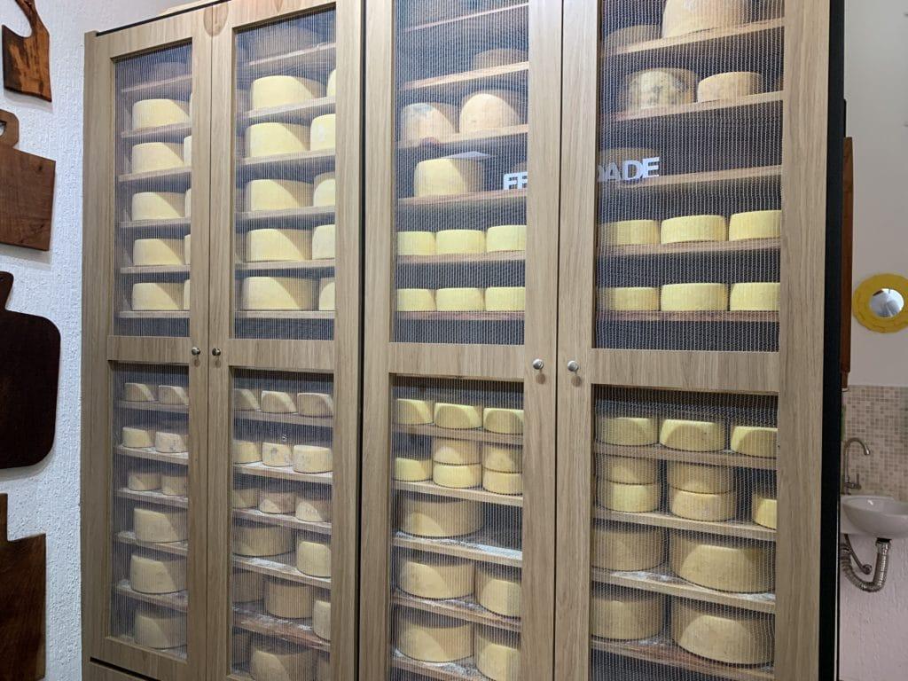 queijos parmesões sendo curado