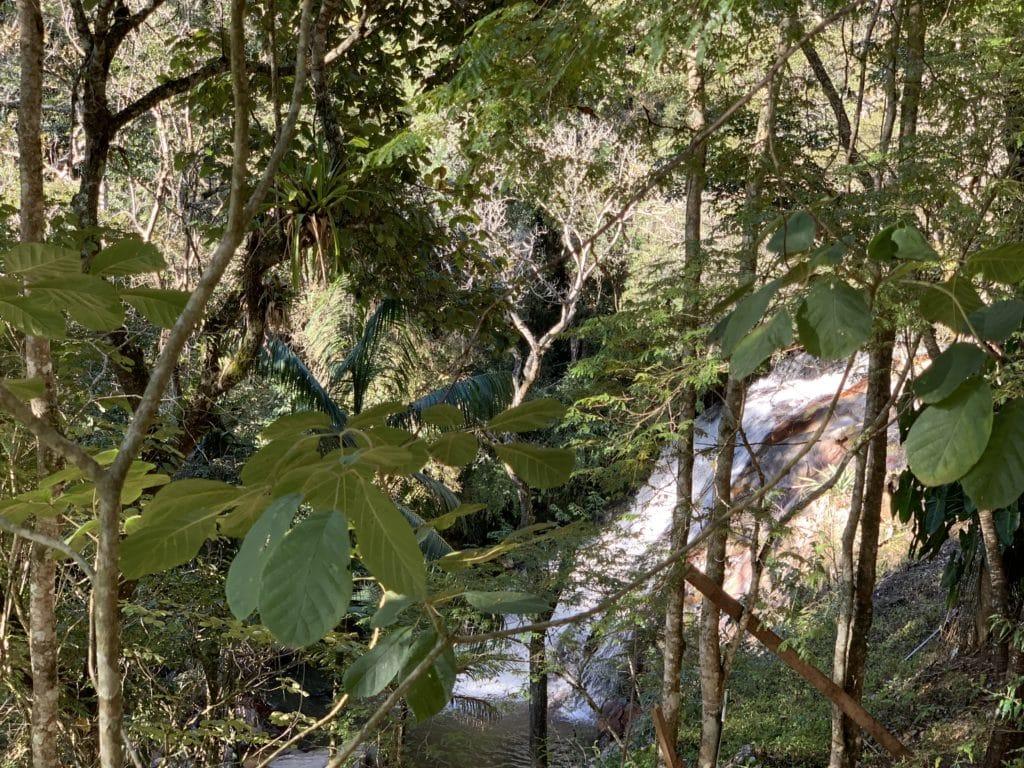 Cachoeira Lageado principal cachoeira em santo antonio do pinhal