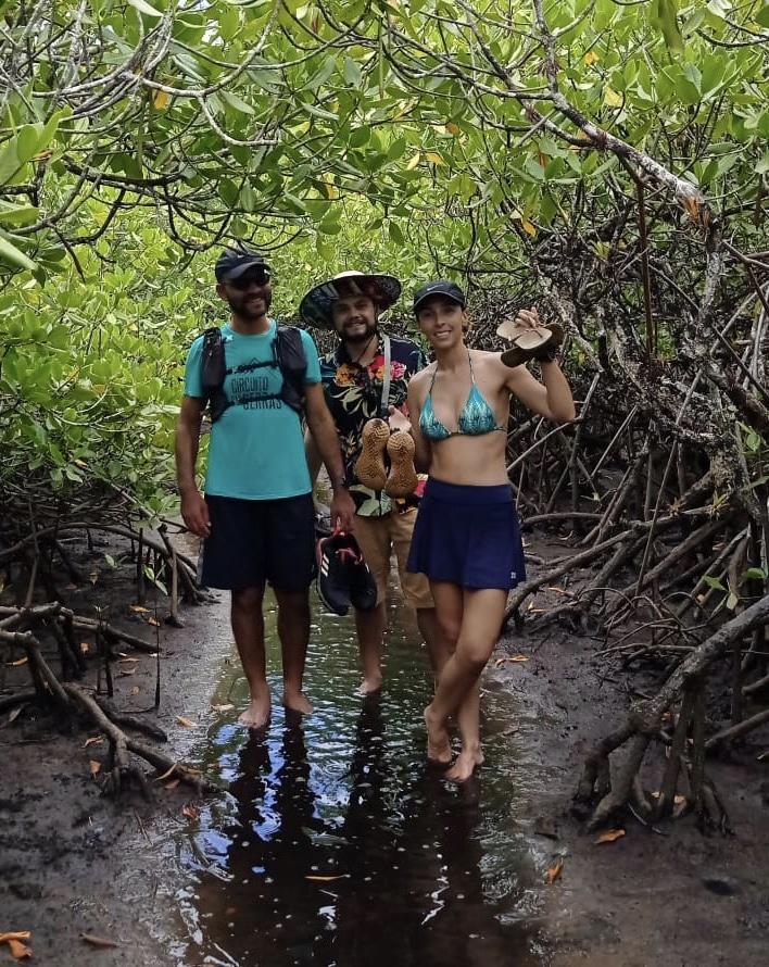 Mangue na trilha até a Praia de Jeribucaçu - Itacaré