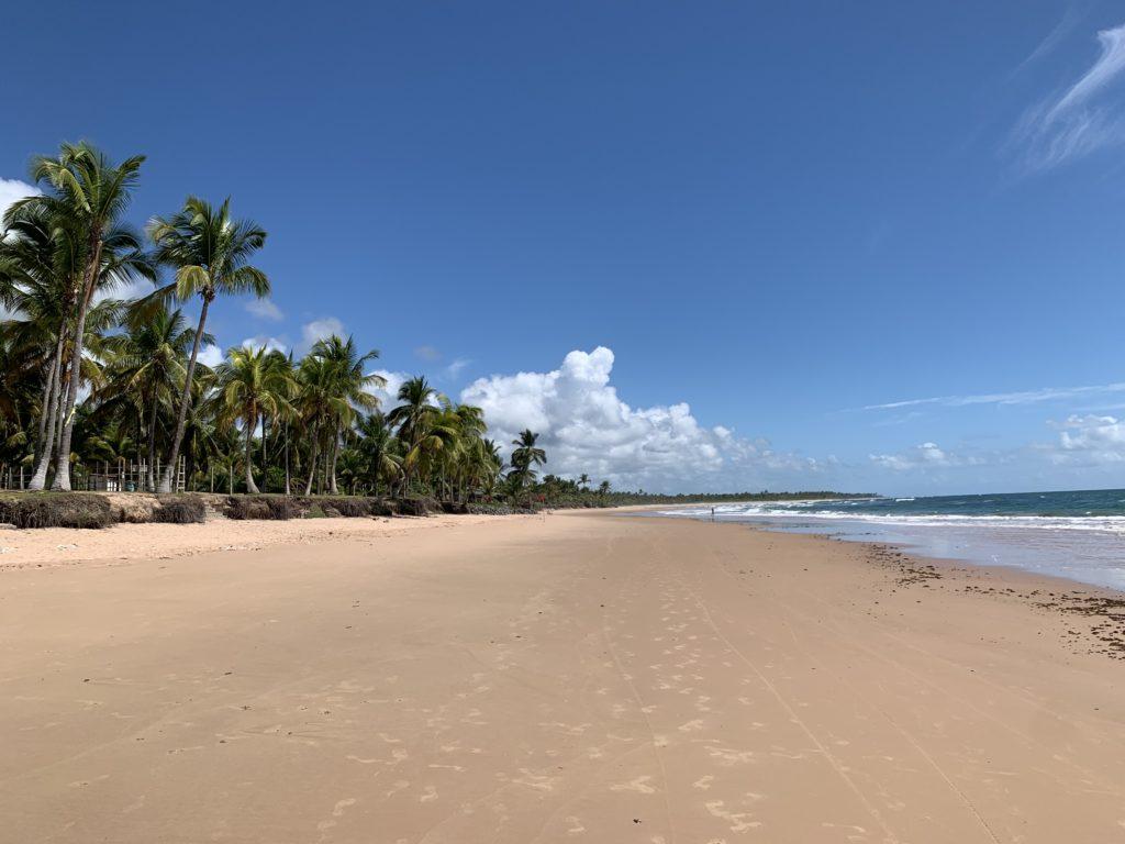 Praia de Algodões - Península de Maraú
