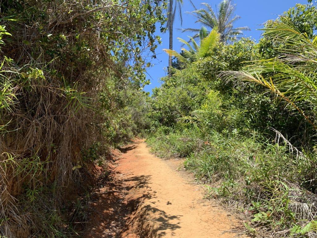 Trilha entre as praias de Itacarezinho e Camboinha - Itacaré